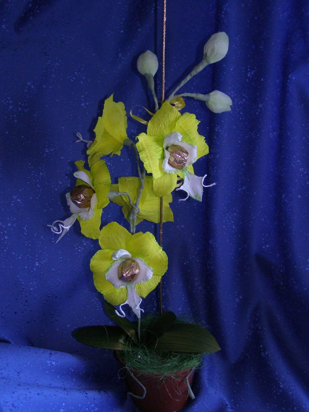 Орхидеи букеты из конфет своими руками фото
